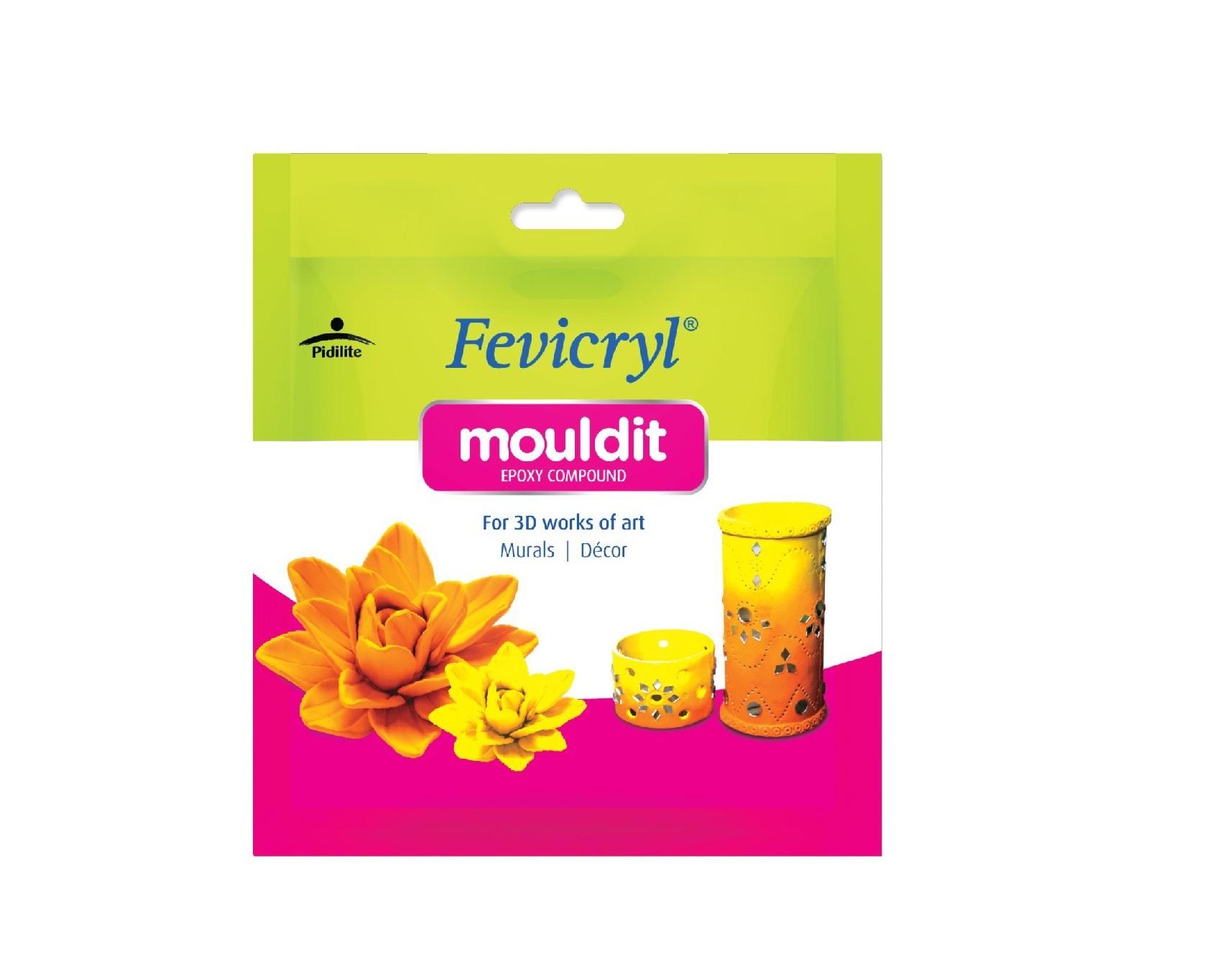 Pidilite Fevicryl Mouldit (50 g)